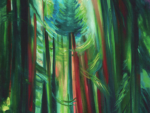 First Light In The Forest | 2006-2007